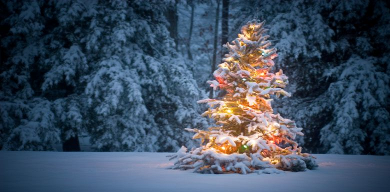 Christmas Tree cropped | Serenity Massage + Wellness Spa