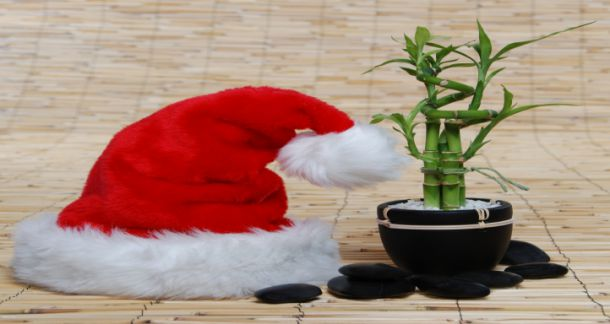 Santa hat bamboo cropped | Serenity Massage + Wellness Spa